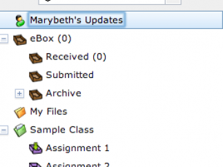 Teachers can organize and manage their classes, files, and folders.