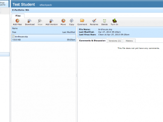 A view of the student eportfolio.