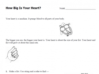 "Pre-K to grade 2 lesson ""How Big is Your Heart?"" integrating math and science comes with a printable worksheet."