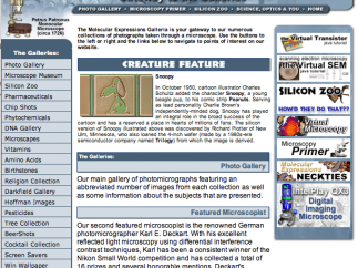 The galleria homepage, showing the various topics with galleries of photomicrographs