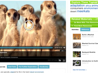 A learning unit on meerkats: watch videos, see photos, play offline games, look up vocabulary words, learn fast facts, and more.