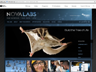 The NOVA Labs homepage connects to its 6 Labs, as well as related resources.
