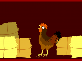 It's a rooster! Listen to the rooster crow