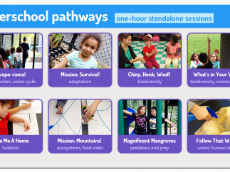 Content is organized into thematic pathways.