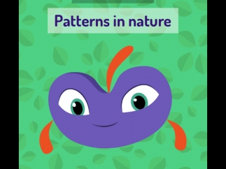Photo missions ask kids to go out and look for particular things in their surroundings, like patterns in nature.