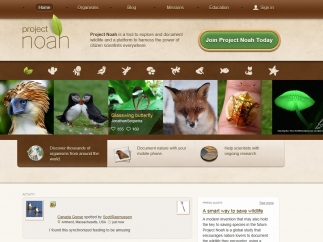 Project Noah is an online community that allows users to post pictures of wildlife from their mobile devices.
