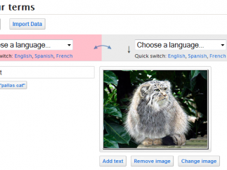 It's easy to add images to flash cards using Quizlet's database of Flickr photos.