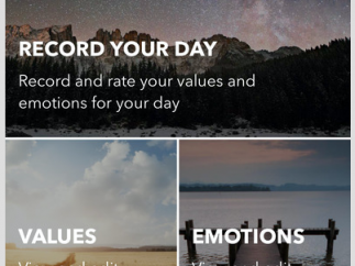 Record daily data, or change the values and emotions you wish to track.
