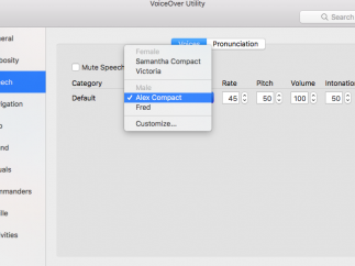 Users can select from different voices.