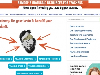 Teachers can purchase individual guides or pay for a regular subscription to access content.