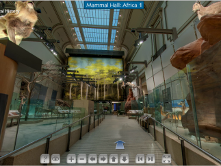 Panoramic tours allow users to virtually move through the museum.