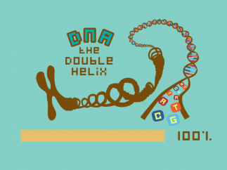 Chromosomes are made of DNA.