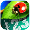 bugs and numbers app