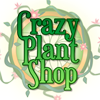 crazy plant shop game