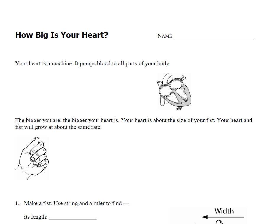 "... Heart?"" integrating math and science comes with a printable worksheet"